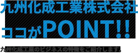 九州化成工業が提供するビジネスの特徴